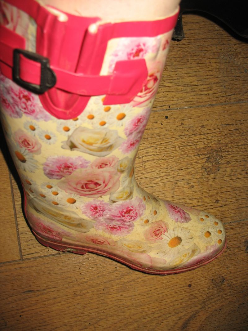 ROSES BOOT UP CLOSE